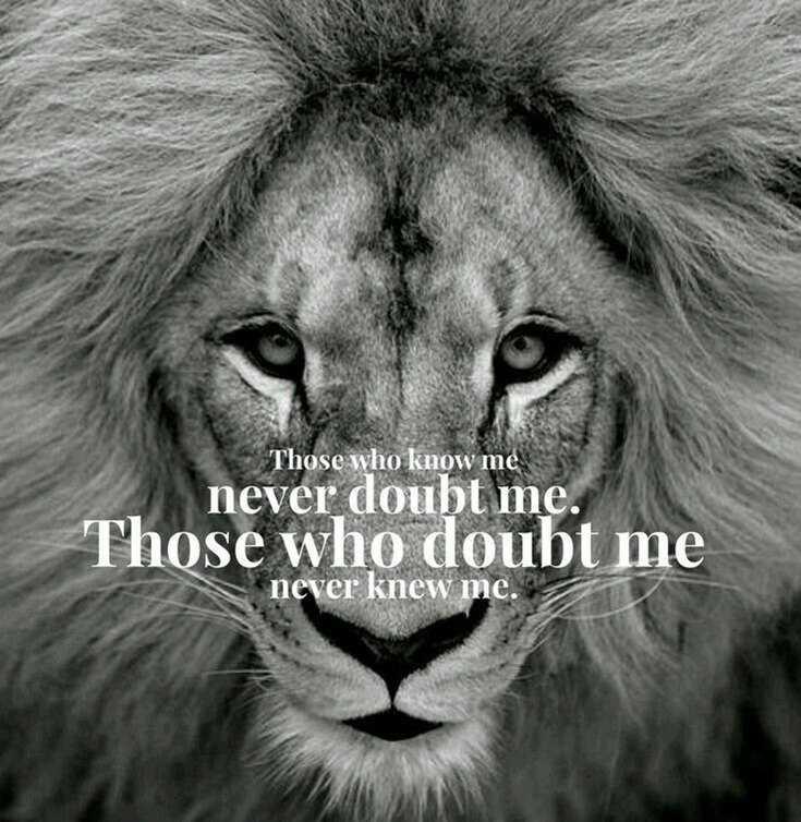 58 Motivational Quotes Quotes About Success 26