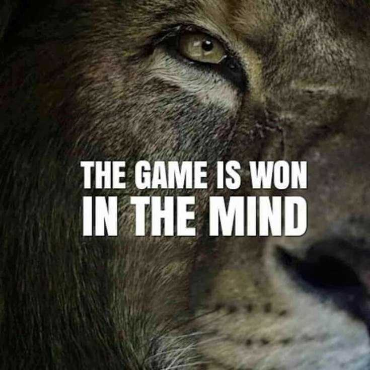 58 Motivational Quotes Quotes About Success 41
