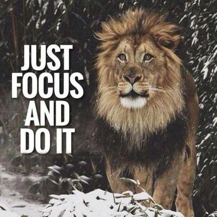 58 Motivational Quotes Quotes About Success 51