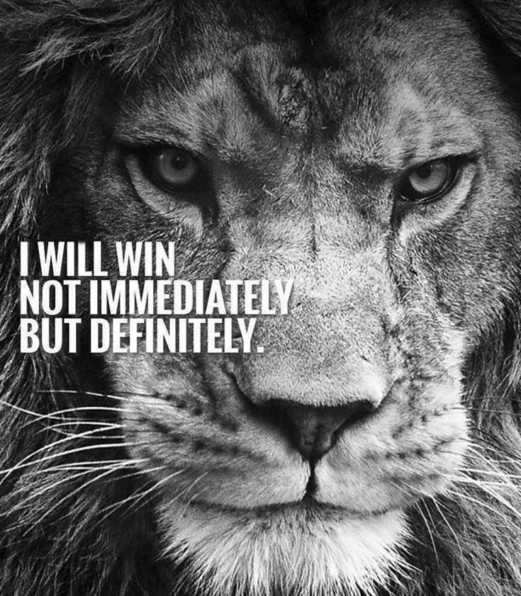 58 Motivational Quotes Quotes About Success 52