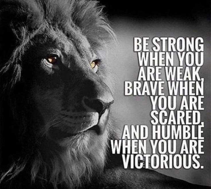 58 Motivational Quotes Quotes About Success 56