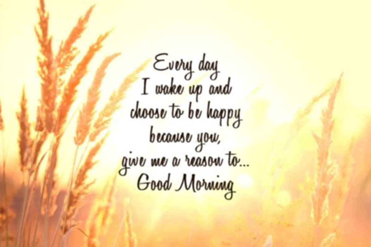 100 Beautiful Good Morning Quotes With Images That Will Enrich Your
