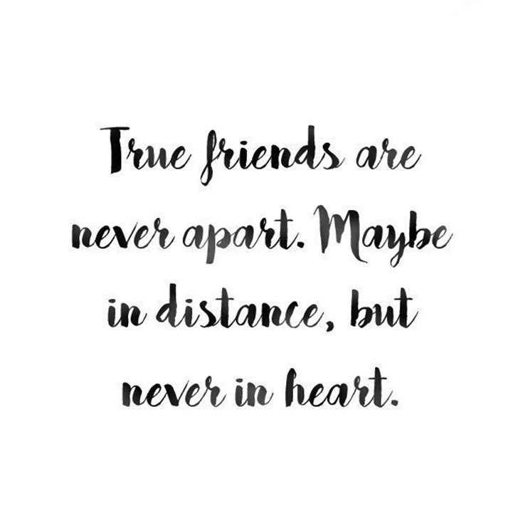59 True Friendship Quotes Best Friends Forever Quotes 9