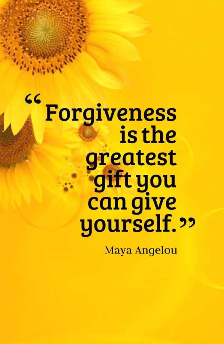 70 Forgiveness Quotes to Inspire Us to Let Go 9
