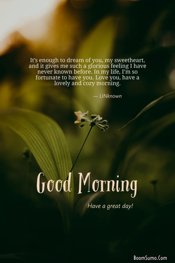 Beautiful Good Morning Life Images | Morning inspirational quotes, Good morning inspirational quotes, Happy good morning quotes