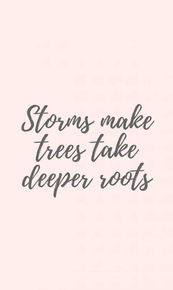 Deep roots Best Perseverance Quotes about life looking back quotes funny motivational quotes don't give up