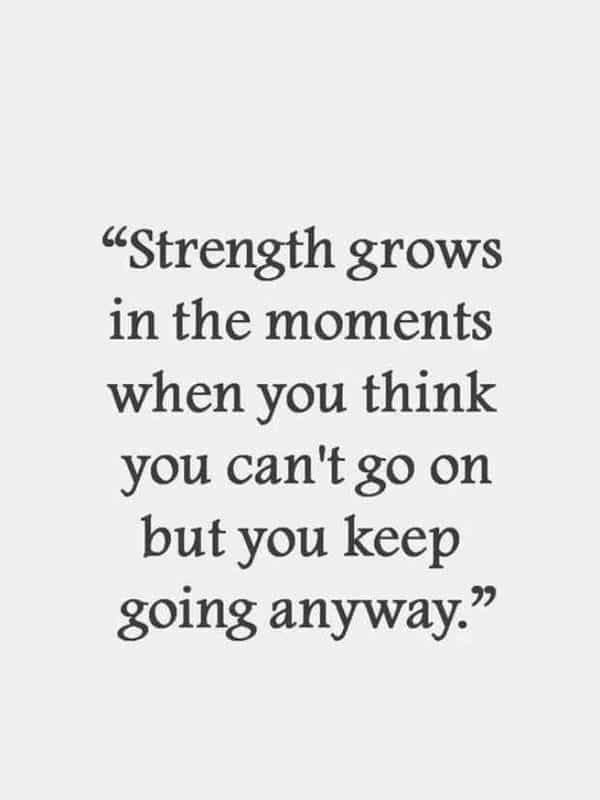60 Best Perseverance Quotes about life 23