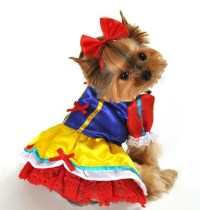 Alice In Wonderland, Robin Hood, Snowwhite Dog Costumes