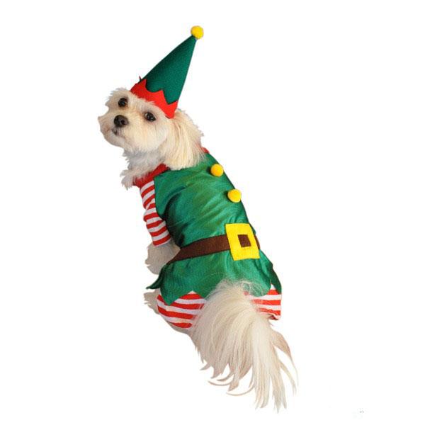 Halloween Dog Costumes : Christmas Dog Costumes