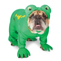 Frog Costume For Dogs : Frog Dog Costume