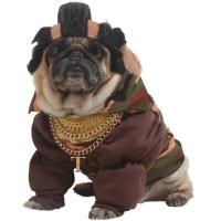 Mr T Dog Halloween Costumes : Mr T Mowhawk Pet Costumes