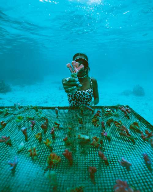 Sarah of SaltyLuxe with the Coral Gardeners Reef Restoration Project