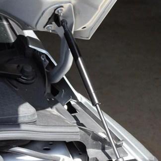 Ford hood struts
