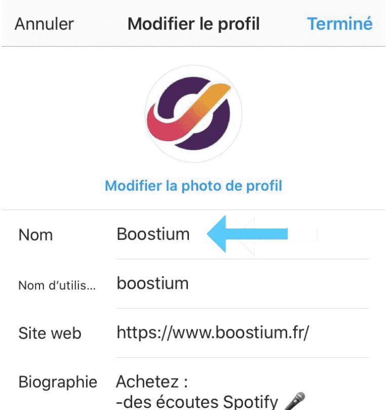 nom biographie instagram