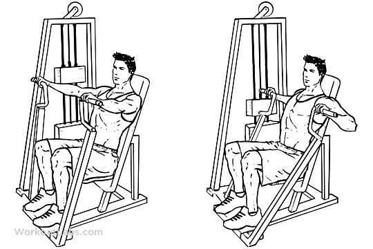 i workout di calum von moger - petto