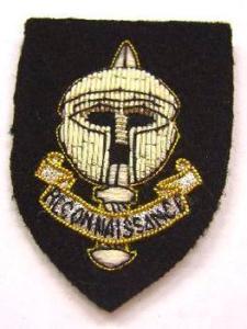Cap Badge, SRR (1)
