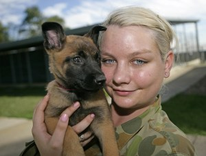 Naming of RAAF puppies