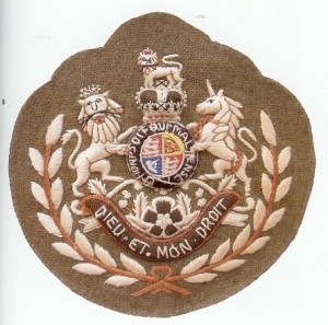 WO1 (AcSM) Badge of Rank