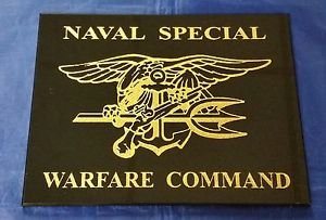US Navy SEAL, Trident, Special Forces, Naval Special Warfare (3)