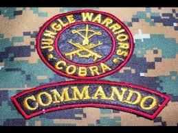 cobra-commando-battalion-for-resolute-action-crpf-2