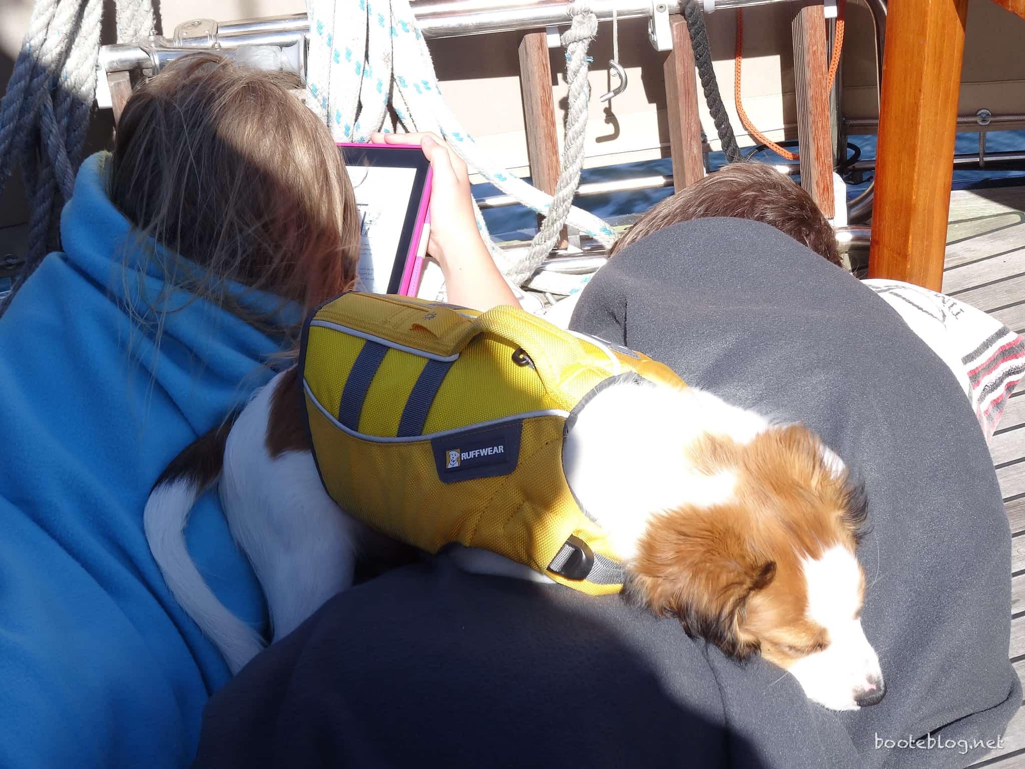 Entspannte Fahrt mit Kindle und Hund.