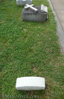 Asia Clarke Grave 3