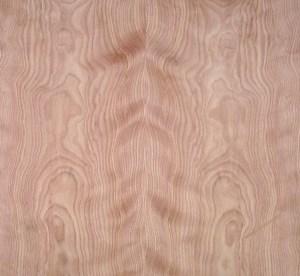 FC red birch