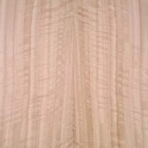 eucalyptus-qtr-fig