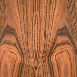 rosewood-santos-fc-7