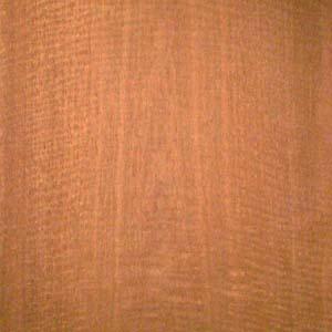 rosewood-santos-fc-5