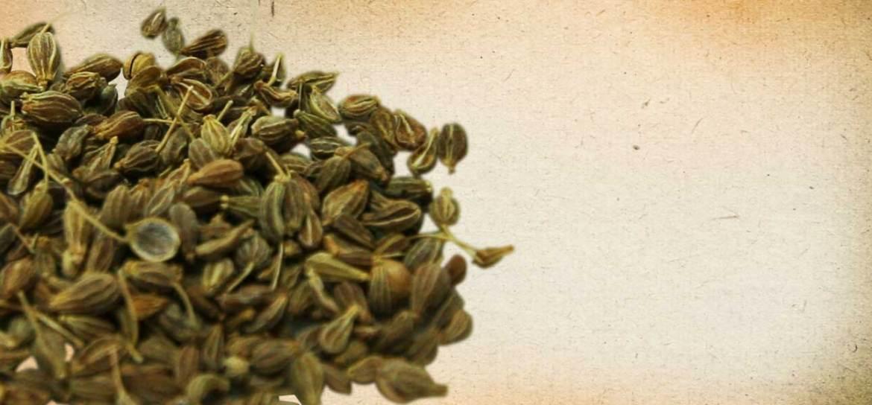 herbs anise
