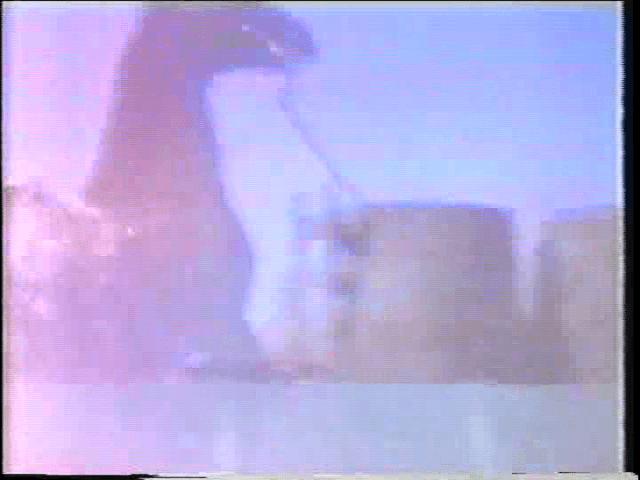 vlcsnap-2019-03-20-00h56m41s724
