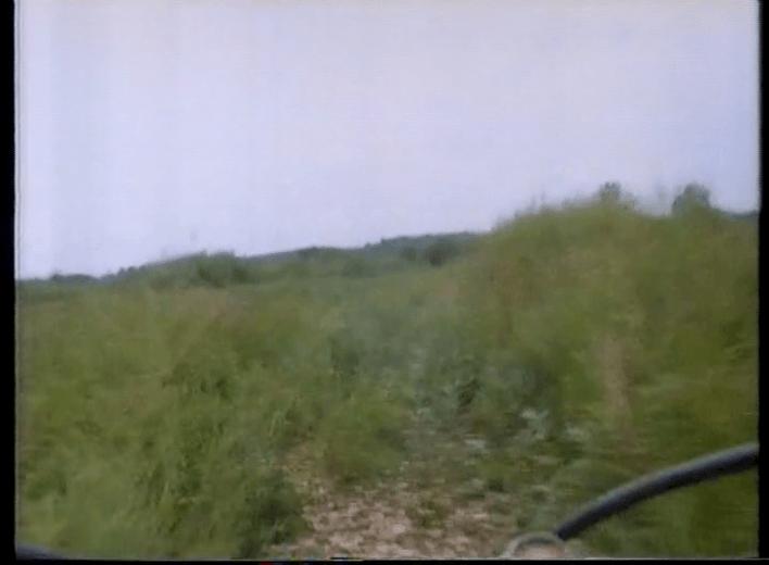 vlcsnap-2019-07-22-16h44m56s207