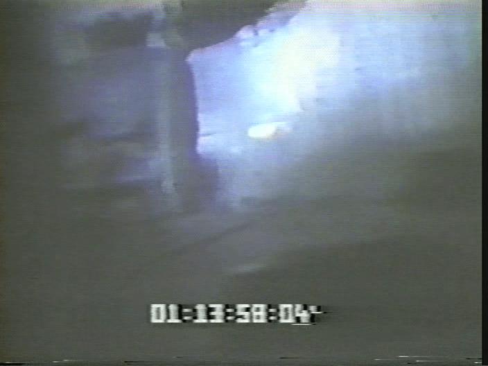 vlcsnap-2019-08-12-17h28m17s619