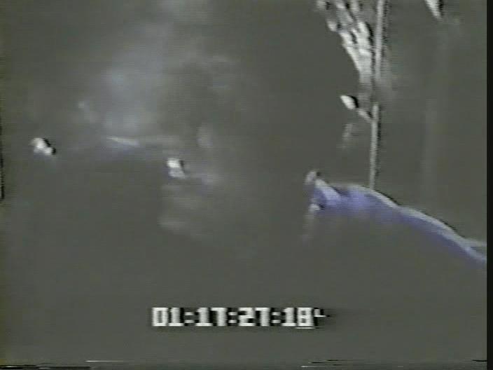 vlcsnap-2019-08-12-19h11m53s108