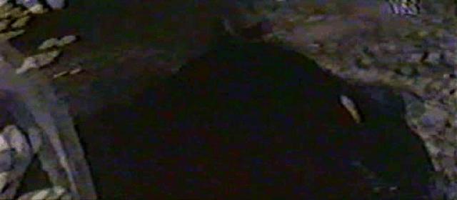 vlcsnap-2020-04-26-22h52m39s812