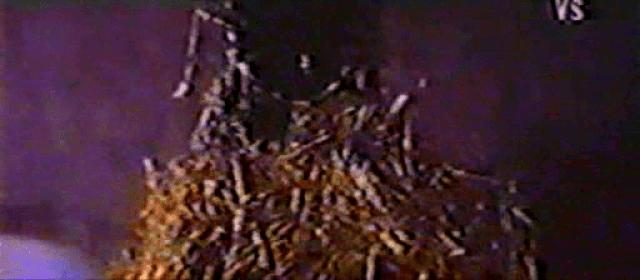 vlcsnap-2020-04-27-11h10m29s443