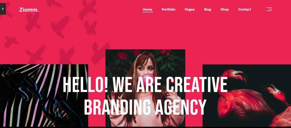 ziomm : thèmes wordpress pour agence web