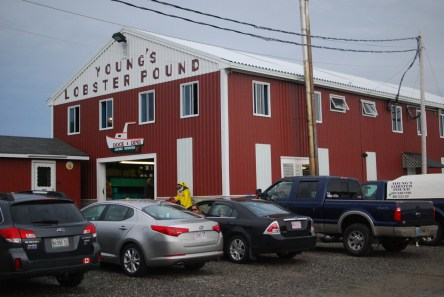 Young's Lobster Pound in Belfast, ME.