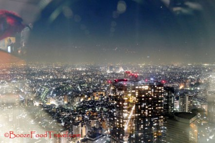 Tokyo skyline framed in glare