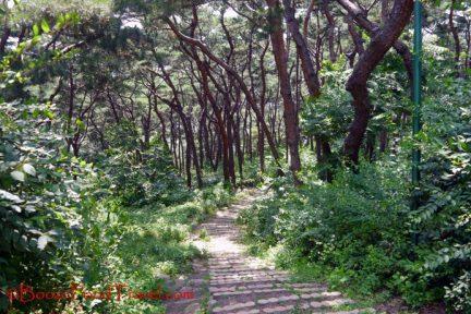 hwaseong-trail