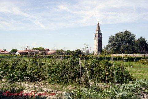 The garden at Mazzorbo