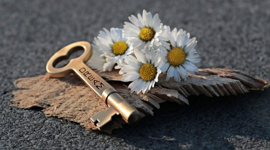 key with daisies