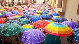 Many Umbrellas