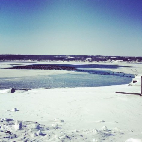 Ice on Seneca : photo by Melissa Brewer