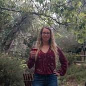 vineyard, wine, wine tasting