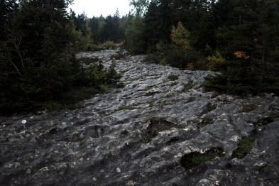 Vercors (Digital photo)