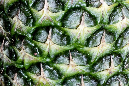 At first glance it looks forbidding with its rough and spiky skin ...