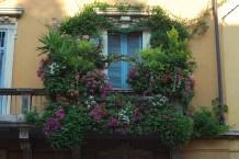balcony 1 (2)