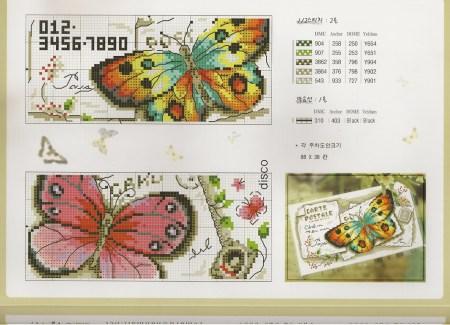 borbado borboleta quadro vintage 4